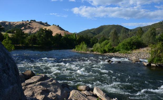 American River - California
